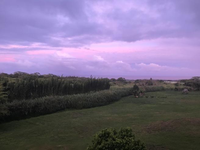 Purple Skies In Pahoa