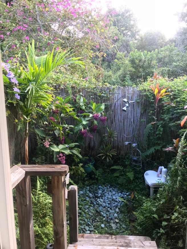 Outside shower in paradise